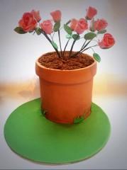 Ellie's Cakery Plant Cake