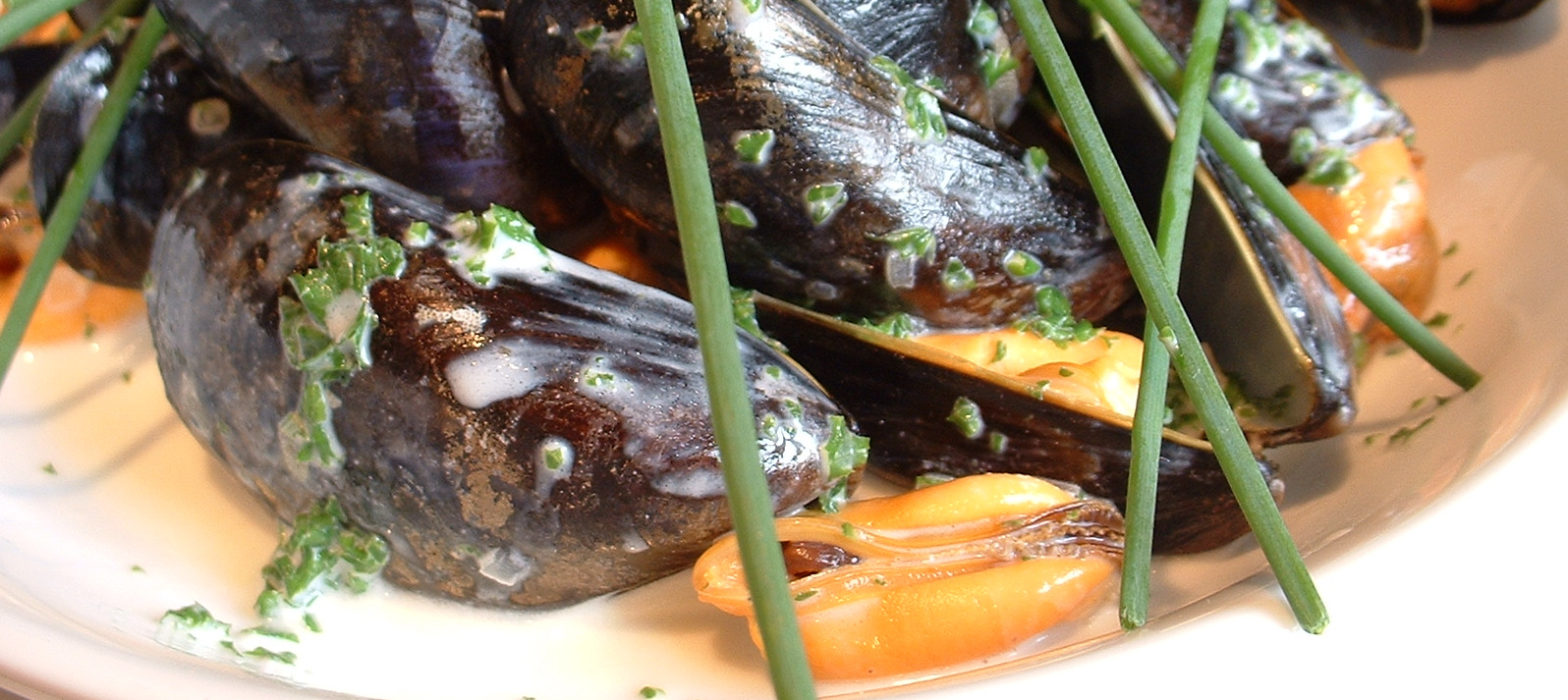 how to make mussels recipe